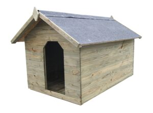 Immutatud männipuidust avatava katusega koerakuut