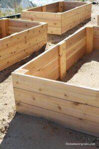 Söögitaimedele sobib istutuskasti ehitamiseks Siberi lehis